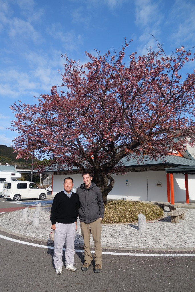Sanada-san brought us to see the one sakura tree that was blossoming in his town while we were there.