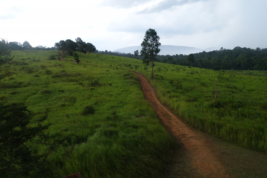 This area is normally a good elephant spotting location, but it was devoid of wildlife while we visited.