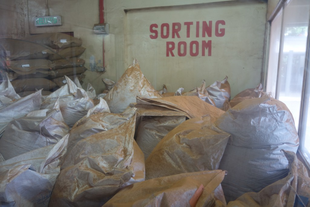 Tea sorting room with gigantic bags of tea.