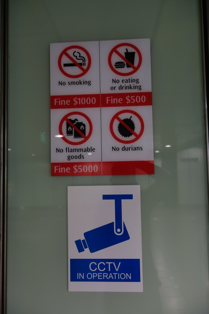 Things that are illegal in Singapore.